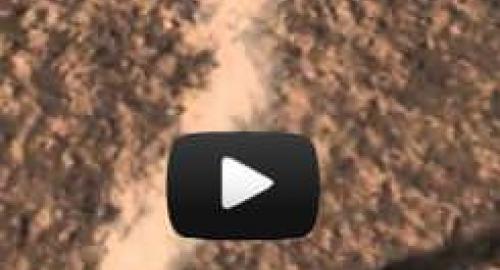Pianeta Rosso: Curiosity trova tracce organiche su Marte, ecco i Marziani [Video]